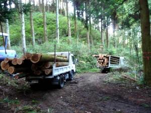 木材の搬出 ウッドロード