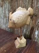 ウマズラハギ 木製