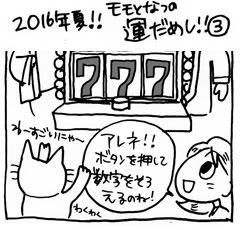 2016年夏!!! モモとなつの運だめし③ ウオールナット ティッシュケース