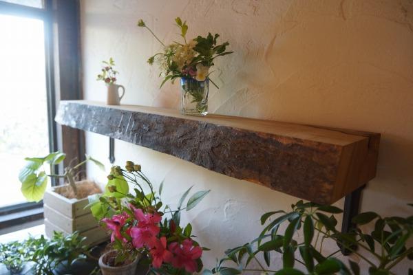 棚板用木材