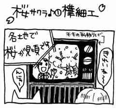木工漫画 桜サクラ♪ ① 樺細工 0404_tmb